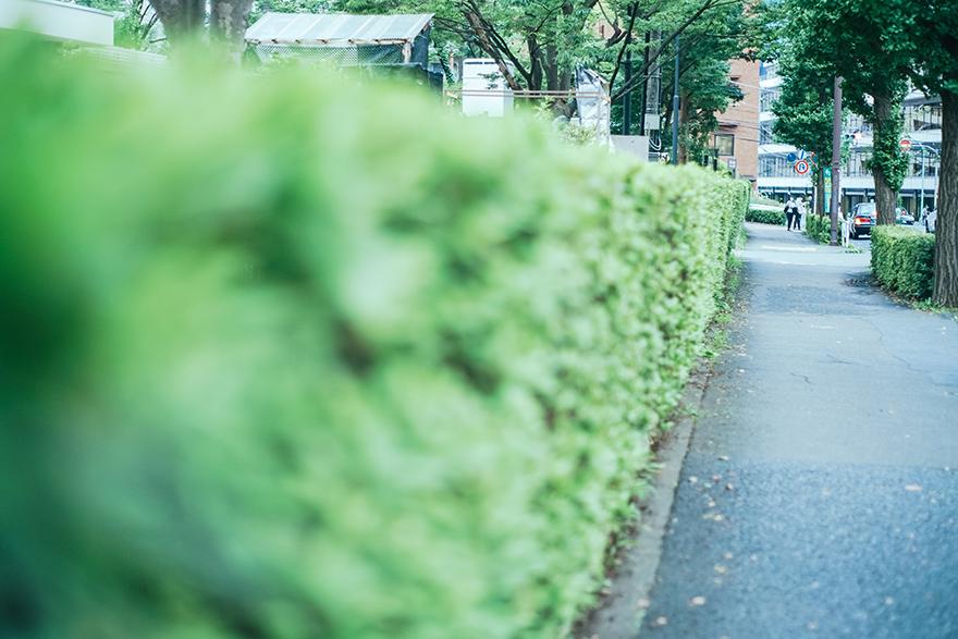 「NATA de Cristiano(ナタ・デ・クリスチアノ)」から渋谷パルコへお散歩